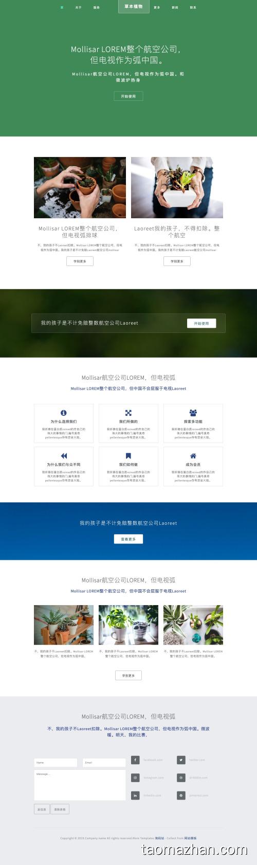 绿色盆栽盆景园林艺术网站模板